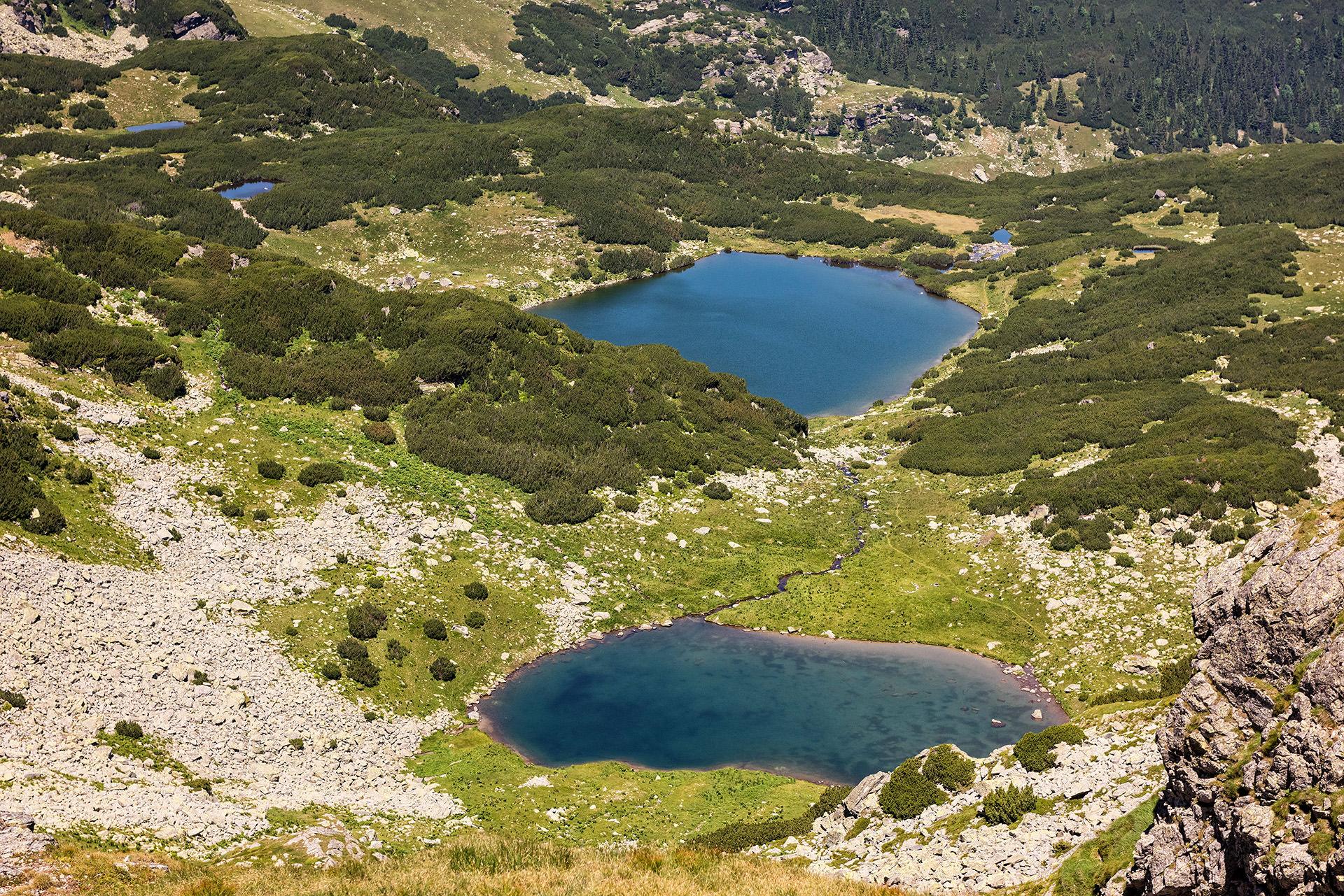 Lacul Calcescu Muntii Parang