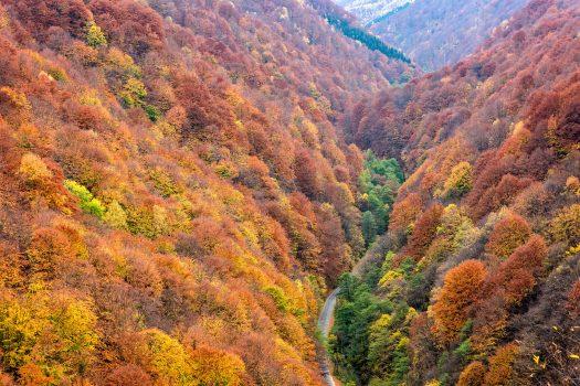 O zi in Tara Hategului – Obiective Turistice Tara Hategului