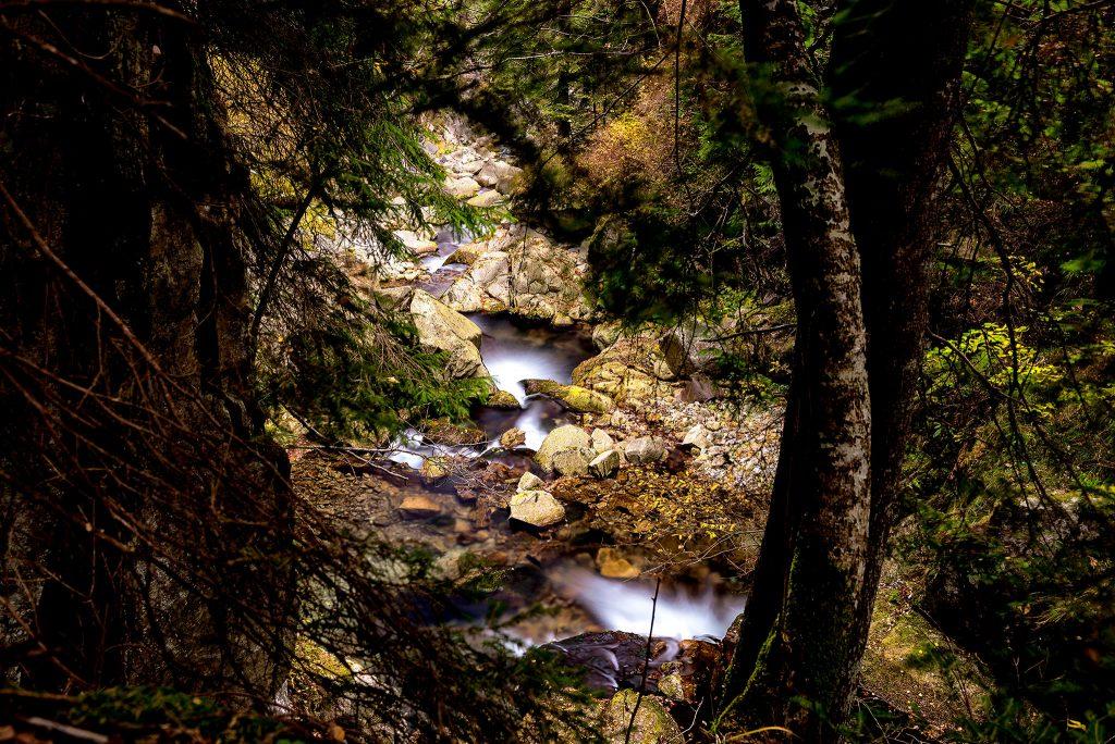 Tara Hategului - Cascada Lolaia 3
