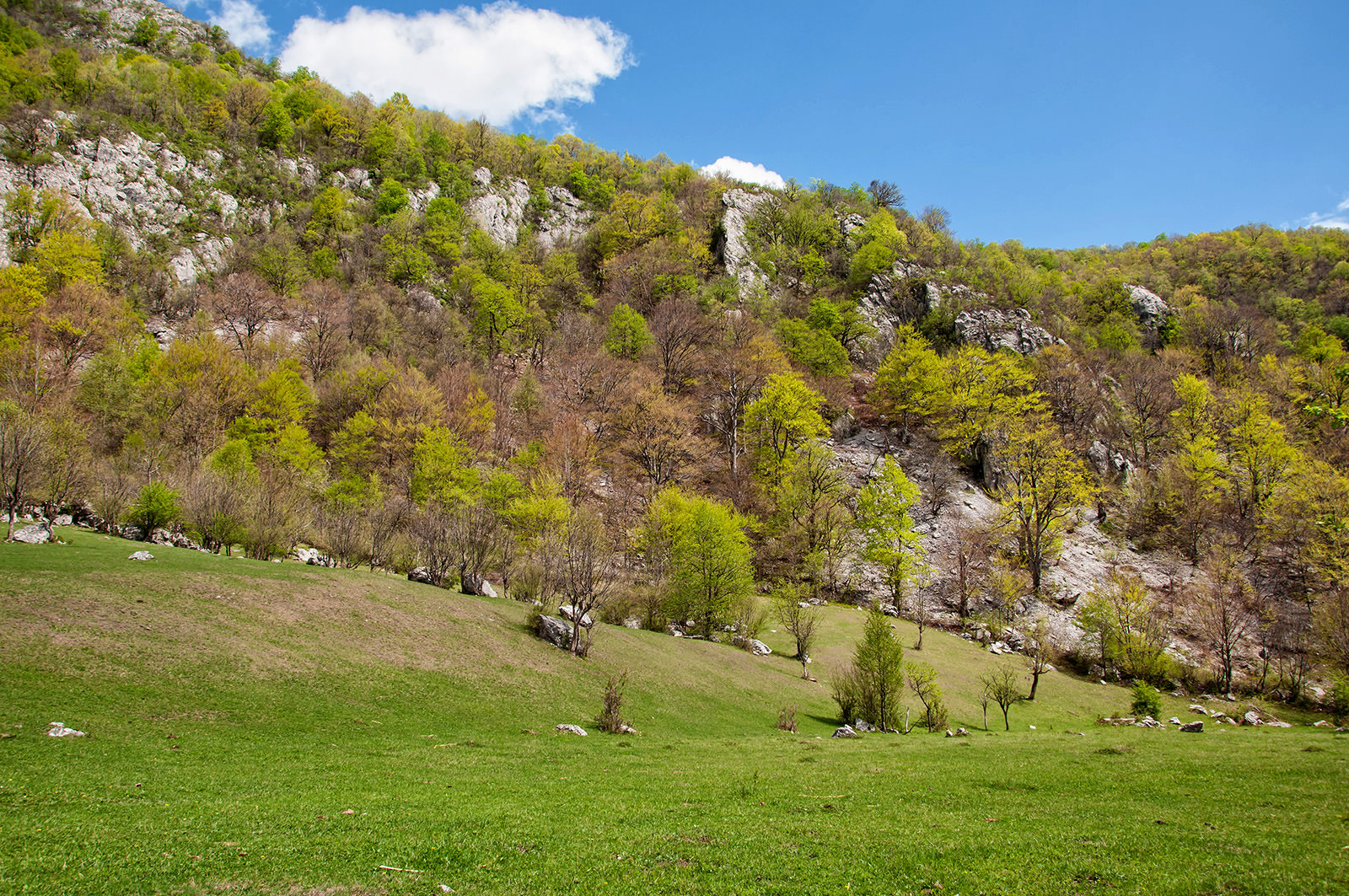 Valea Motru Sec Judetul Gorj