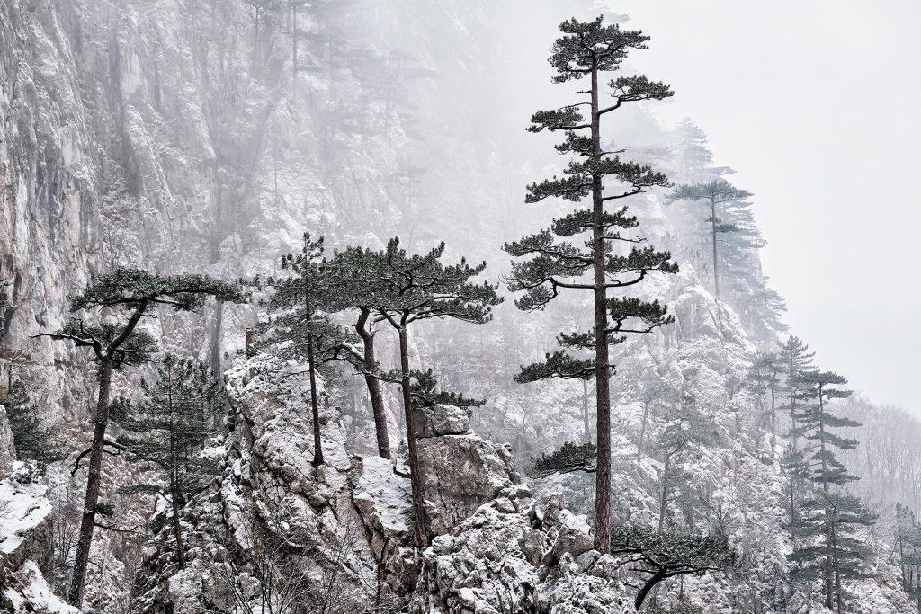 Parcul National Domogled - Valea Cernei